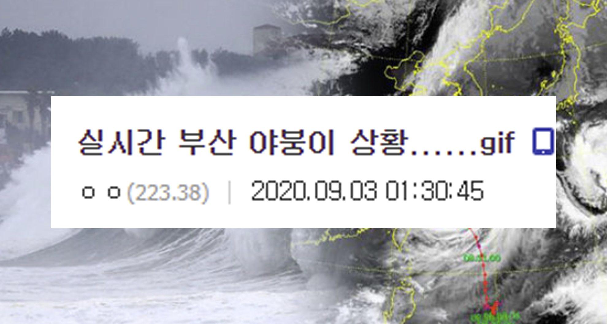 최근 한국 남부를 강타한 태풍 '마이삭' 근황….ㄷㄷㄷㄷㄷ
