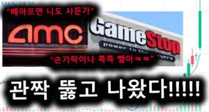 세계에서 다시 한 번 터진 GME AMC…도박판 또 열렸다!!!!!